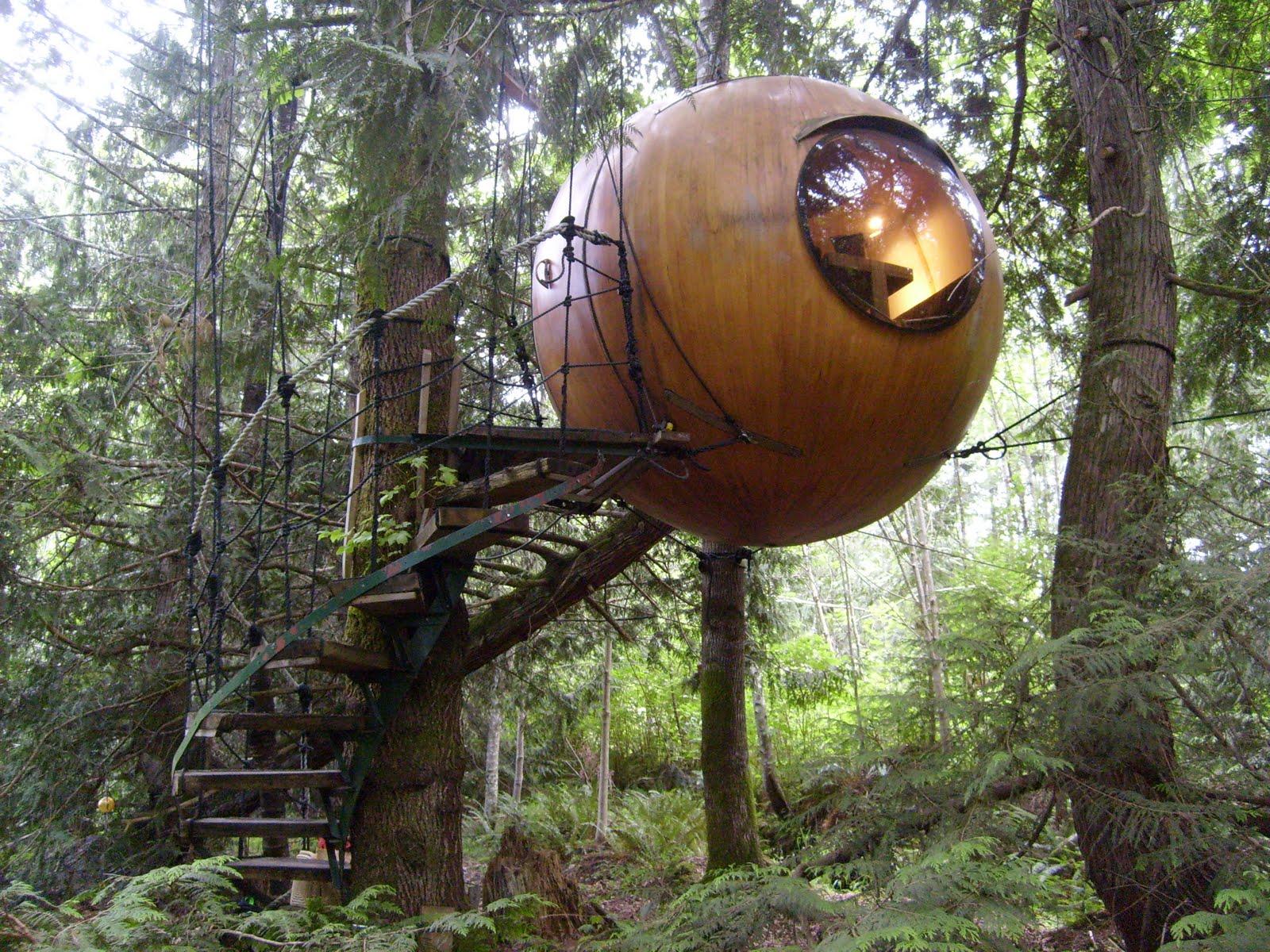 Vive una experiencia en las alturas caba as en los - Casas en los arboles sant hilari ...